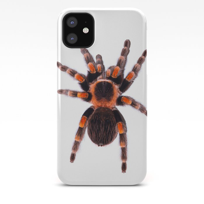 Mexican redknee tarantula (chypelma smithi) iPhone Case by samkeh on map where do tarantula, how long do tarantulas live, map of where camels are from, where do tarantulas live, map where do lizards live on a glass, map of brown recluse spiders in the us, map of arkansas, were tarantula live, map where do praying mantis live, map of mississippi natural resources, maps of where the brown widows live, map of tarantulas in us, map of tarantula hawk wasp,