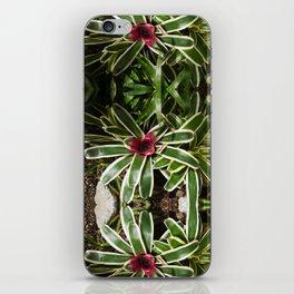 Bromelia Flowers iPhone Skin