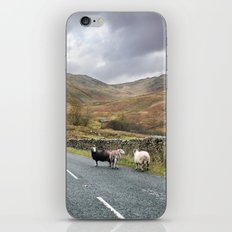 Hitchhikers iPhone & iPod Skin