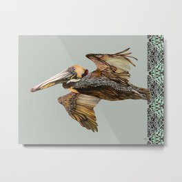 Brown Pelican Flight with Vintage Seafoam Stripe Metal Print
