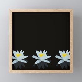 Waterlily Flowers On Black Background #decor #society6 #buyart Framed Mini Art Print