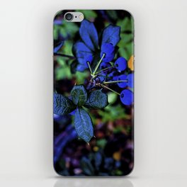 Exotic fruit and rich. iPhone Skin