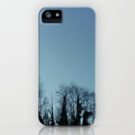 Fog and Forest- wood,mist,romantic, greenery,sunset,dawn,Landes forest,fantasy iPhone Case