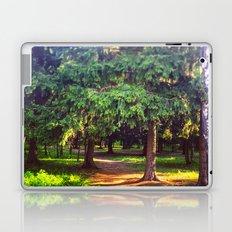 Morning walk Laptop & iPad Skin