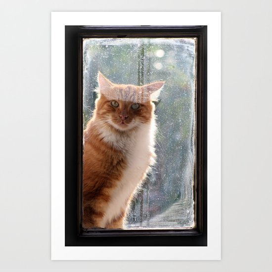 Ginger Cat  waiting by the window  (CW004) Art Print
