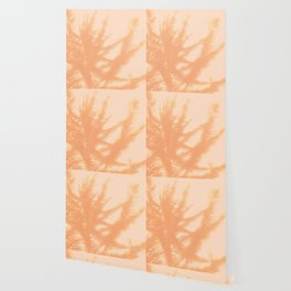 spring breeze Wallpaper