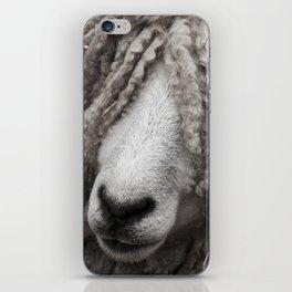 Dreaded Sheep iPhone Skin