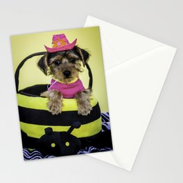 Yorkshire Terrier Puppy Wearing a Hot Pink Shirt and Cowboy Hat Poses in a Bumble Bee Basket Stationery Cards