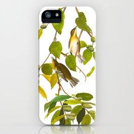 Autumnal Warbler Bird iPhone Case