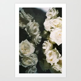 double roses Art Print