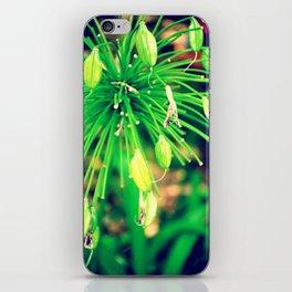PurpleFlowers iPhone Skin