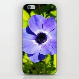 Blue Anemone iPhone Skin