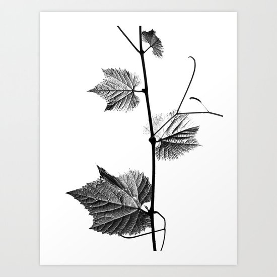 wine leaf abstract III Art Print