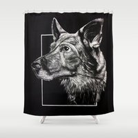 german Shower Curtains featuring German Shepherd by Ashley Anderson