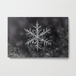 January Snowflake #7 Metal Print