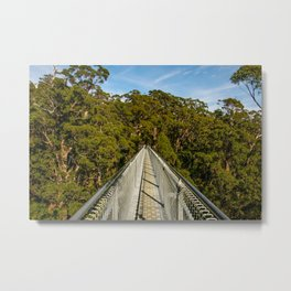 Valley Of The Giants (Tree Top Walk), Denmark, Western Australia Metal Print