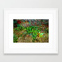 plant Framed Art Prints featuring plant by ebdesign