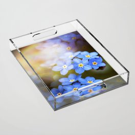 Don't Forget Me no.3863 Acrylic Tray