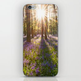 Spring in the Forest iPhone Skin