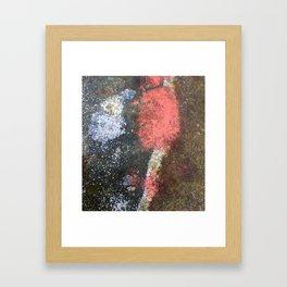 Rusty art rose Framed Art Print