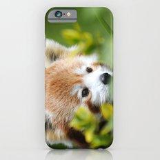 Red Panda 4 Slim Case iPhone 6s