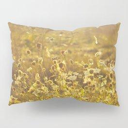 A Field at Golden Hour Pillow Sham