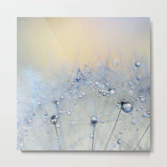 ice blue dandelion by ingz
