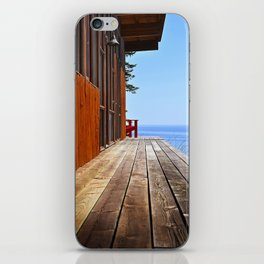 the view iPhone Skin