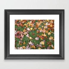 Fallen Foliage Framed Art Print