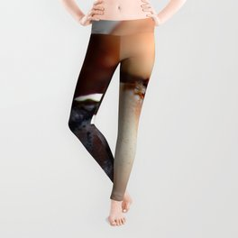 Crab Pincer Leggings