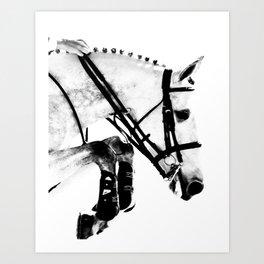 Horse Jumping Art Print
