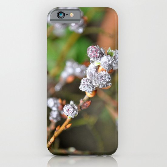 nature with drops iPhone & iPod Case