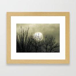 Winter Into Spring Framed Art Print
