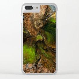 Terrestre Clear iPhone Case