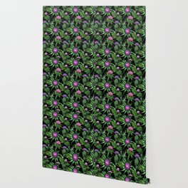 Pink Thistle Pattern on Black Wallpaper