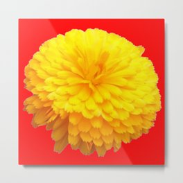 BRILLIANT LARGE YELLOW FLOWER ON RED Metal Print