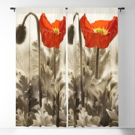 Poppy Red 0171 Blackout Curtain
