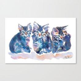 Crazy Quilt Kittens Canvas Print