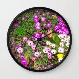 Mesembryanthemum Wall Clock