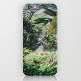 Tropical Paradise - Kauai Hawaii iPhone Case