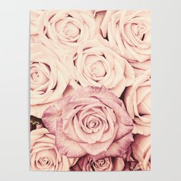 Some people grumble I Floral rose roses flowers pink Poster