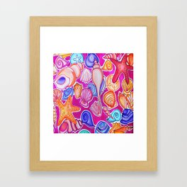 Colorful Seashells Framed Art Print