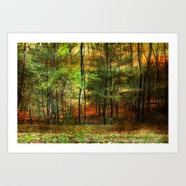 Autumn Sunset - In The Woods Art Print