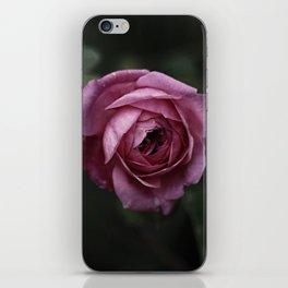 Garden Rose iPhone Skin