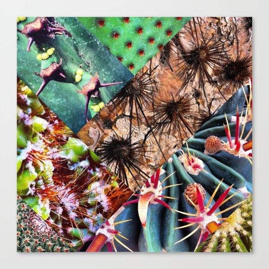 Cactus Collage Canvas Print