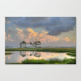 Morning Clouds  Canvas Print
