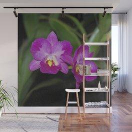 Magnificent Magenta Orchid - Ctna Capri Wall Mural
