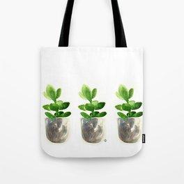 Simple Jadeplant Tote Bag