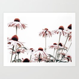 Radiant Flowers Art Print