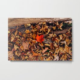 One Other Metal Print